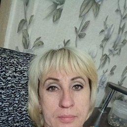 Лиса, 41 год, Бреды