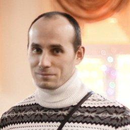 Антон, Чебоксары, 37 лет