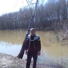Михаил, 37 лет, Чехов