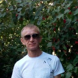 Александр, 45 лет, Тольятти