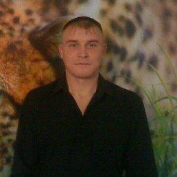 Андрей, 33 года, Брянск
