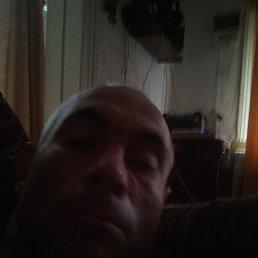 Дмитрий, 43 года, Пенза