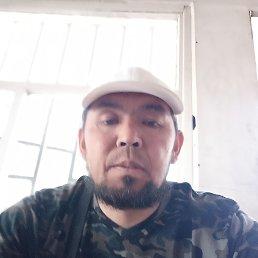 Керим, 43 года, Бишкек
