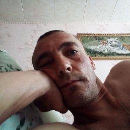 Александр, 40 лет, Тольятти