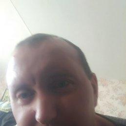 Вова, 41 год, Брест