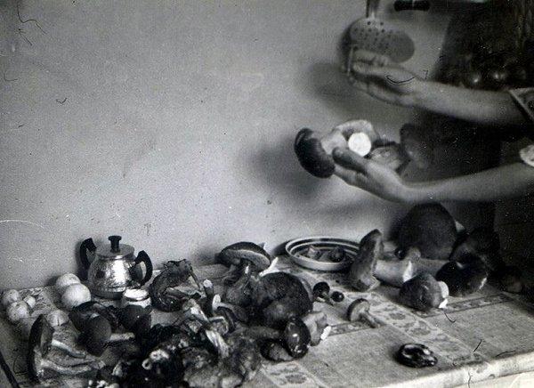 За грибами! - 4