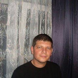 Maksim, 38 лет, Саратов