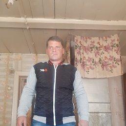 Коля, 35 лет, Саратов