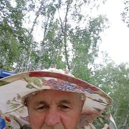 Виктор, 62 года, Омск