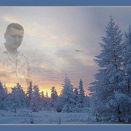 Владимир, 42 года, Москва