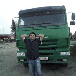 Егор, 29 лет, Белогорск