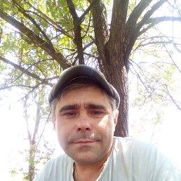 Сергей, 37 лет, Светлоград