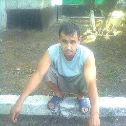 Саша, 38 лет, Саратов