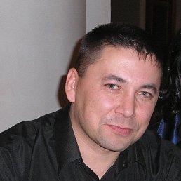 Александр, 48 лет, Касли