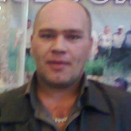 Юрий, 47 лет, Новосибирск