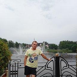 Дмитрий, 42 года, Электросталь