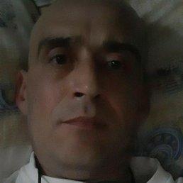 Дима, 44 года, Кемерово