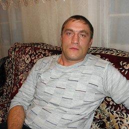 Коля, 37 лет, Воронеж