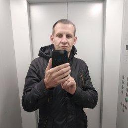 ал, 37 лет, Воронеж