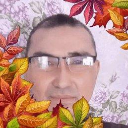 Юрий, 53 года, Новосибирск