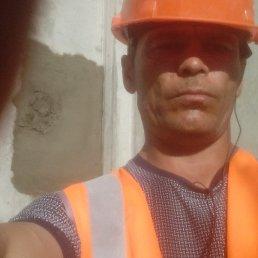 Гена, 37 лет, Владивосток