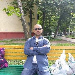 Коля, 38 лет, Дедовск