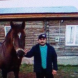 Виктор, 42 года, Воронеж