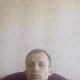 Денис, 34 года, Казань
