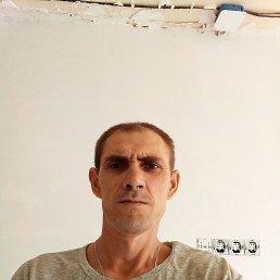Сергей, 37 лет, Владивосток