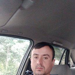 Федя, 27 лет, Екатеринбург
