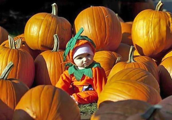 Как я буду праздновать Halloween